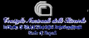 Logo CNR Istituto di Studi Giuridichkhi Internazionali
